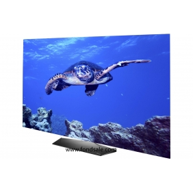 Wholesale LG OLED65B6P Flat 65-Inch 4K Ultra HD Smart OLED TV